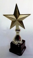 61913004 TROPHY STAR 18CM EACH R64