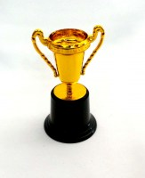 67900435 TROPHY PLACTIC 13CM EACH R11